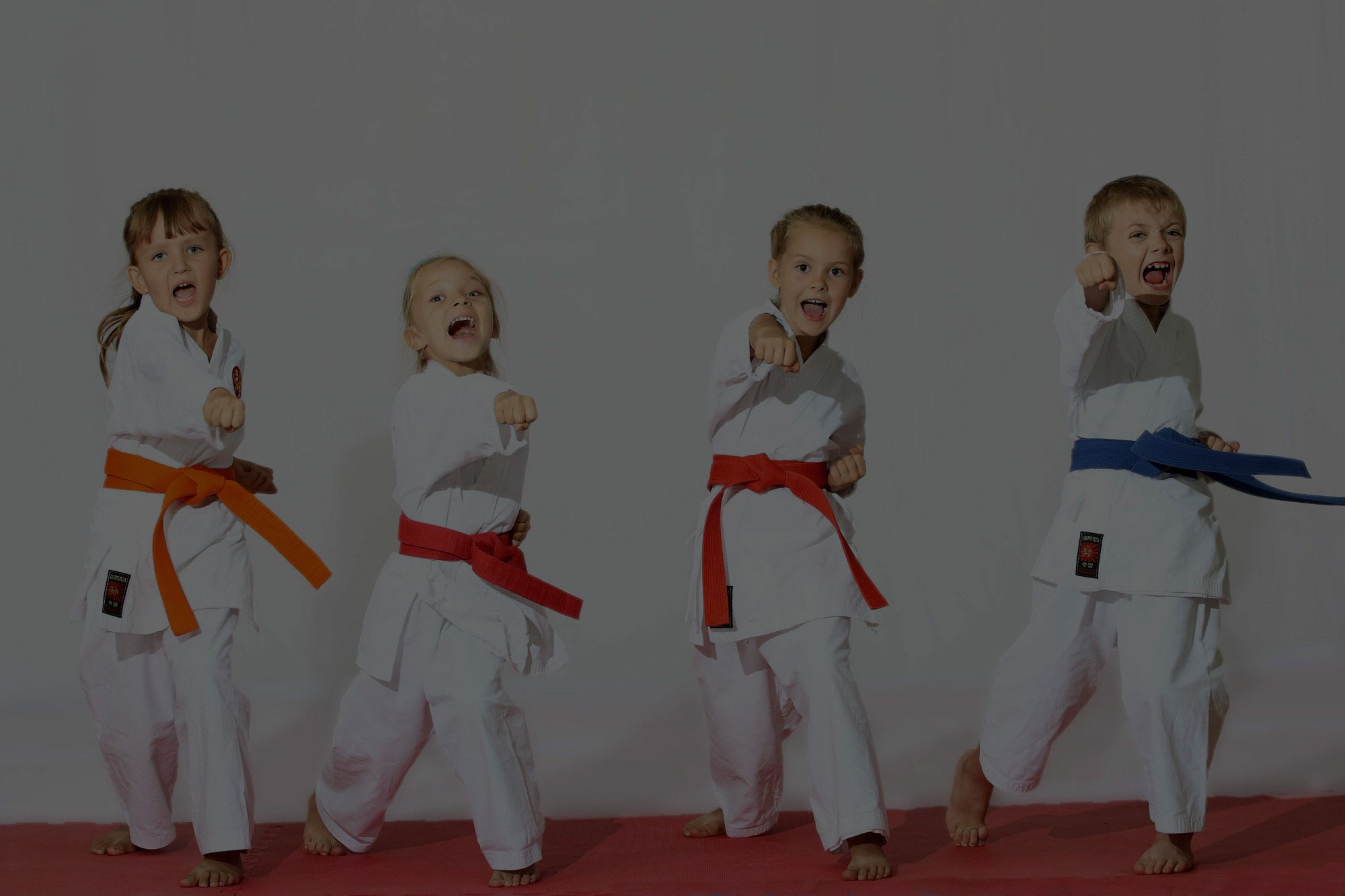 Kinder-Karate Ansbach